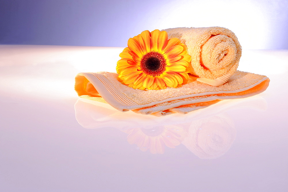 Terry cloth towel with gerbera, wellness - 832-376877