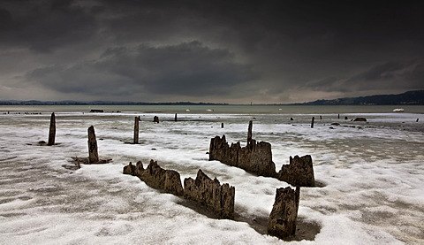 Remains of pile-dwellings at the lakeside of Hoeri peninsula in Lake Constance, Baden-Wuerttemberg, Germany
