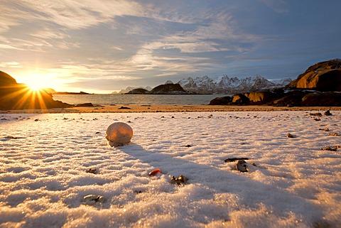 Shell on a snow-covered sandy beach in the evening light, near Digermulen, Lofoten Islands, Norway, Europe, PublicGround