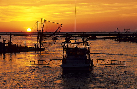 Fishing boats in the harbor of Cocodrie in the Mississippi river delta - 832-377253