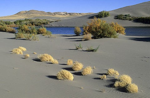 Sand dunes and lake at Bruneau Dunes State Park, Idaho, USA