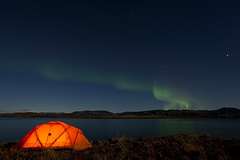 Illuminated expedition tent, Northern lights, Polar Aurorae, Aurora Borealis, green, reflections in water, Lake Laberge, near Whitehorse, Yukon Territory, Canada