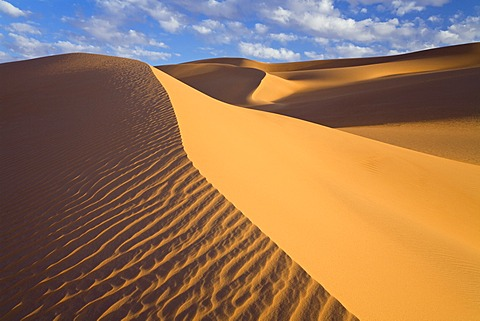 Sand dunes in the Libyan Desert, Sahara, Libya, North Africa, Africa
