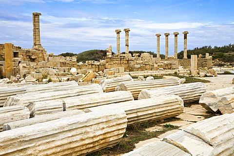 Old Forum, Leptis Magna, Libya, North Africa, Africa