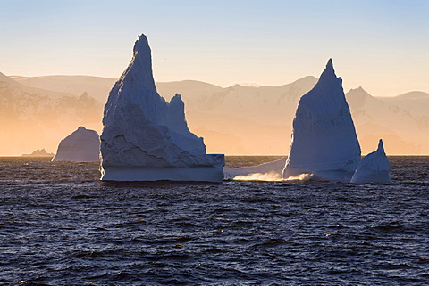 Icebergs off the Antarctic Peninsula at sunrise, Antarctica