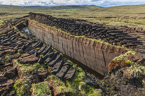 Cut peat on a peat bog, Yell, Shetland Islands, Scotland, United Kingdom, Europe