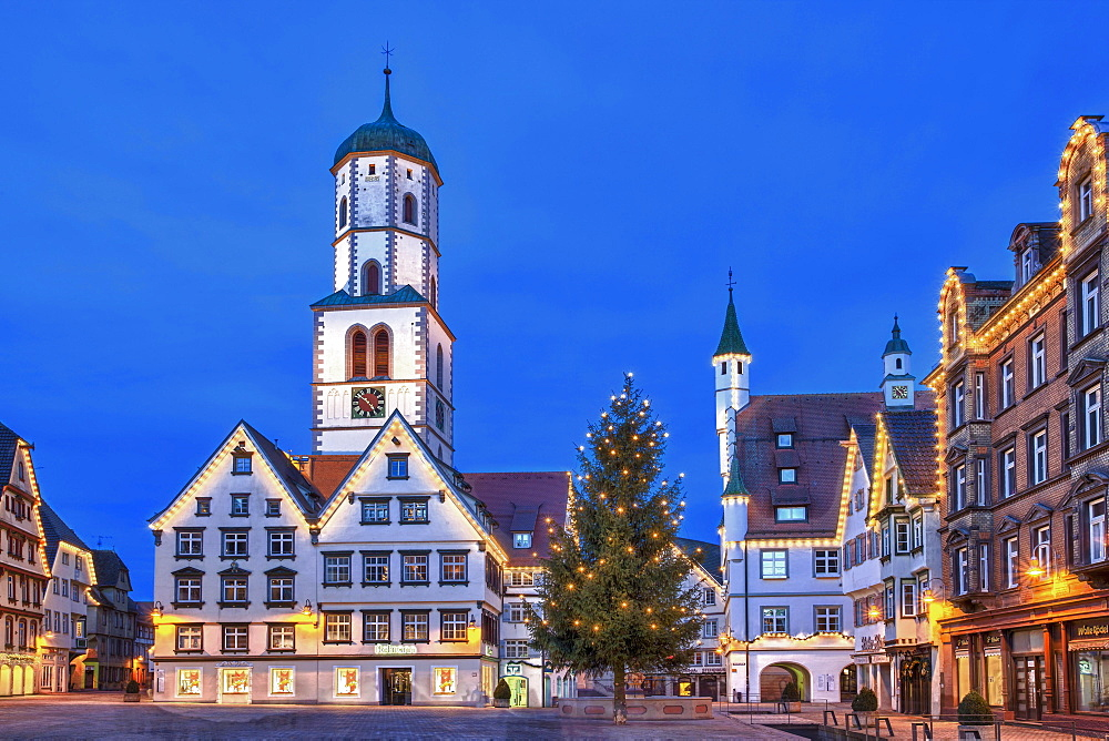 "Historic buildings, market square, St. Martin parish church, town hall, ""Des Esels Schatten"" sculpture, Christmas tree, dusk, Biberach an der Riss, Baden-Wuerttemberg, Germany, Europe"