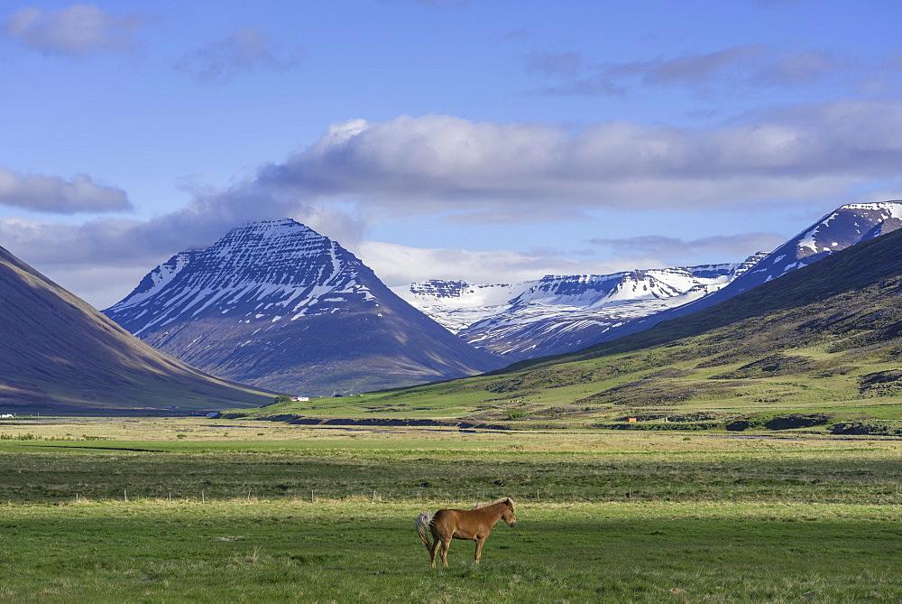 Mountain massif Hagafjall, Holar, Norourland vestra, Iceland, Europe