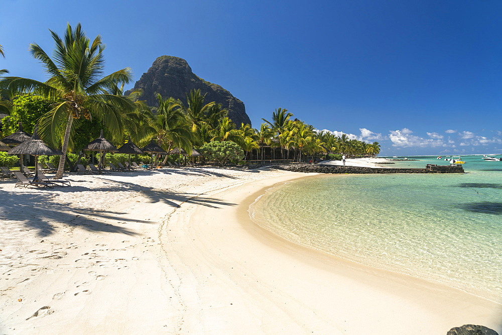 Beach with palm trees, mountain Le Morne Brabant in the background, peninsula Le Morne, Black River, Mauritius, Africa