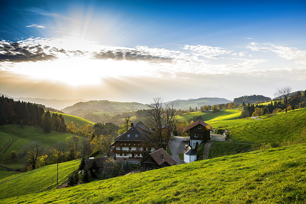 View of hilly landscape with farmhouse, near St Märgen, Black Forest, Baden-Württemberg, Germany, Europe