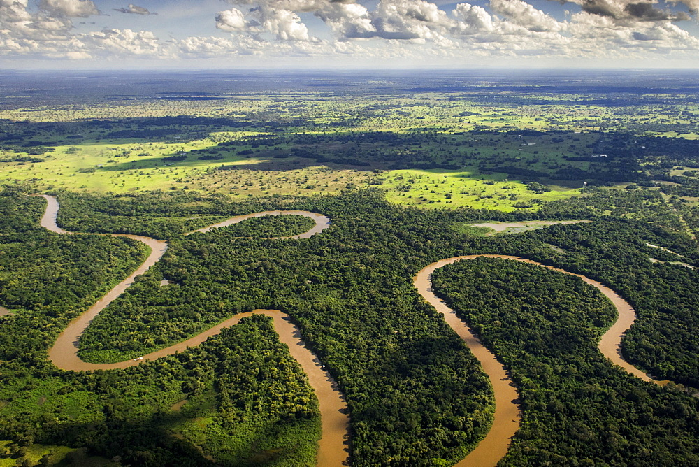 Rio Aquidauana flows through jungle, Pantanal, Mato Grosso do Sul, Brazil, South America