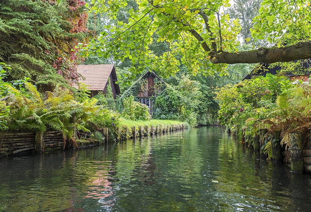 Tributary of the Spree river with small houses, Lübbenau, Spreewald, Brandenburg, Germany, Europe