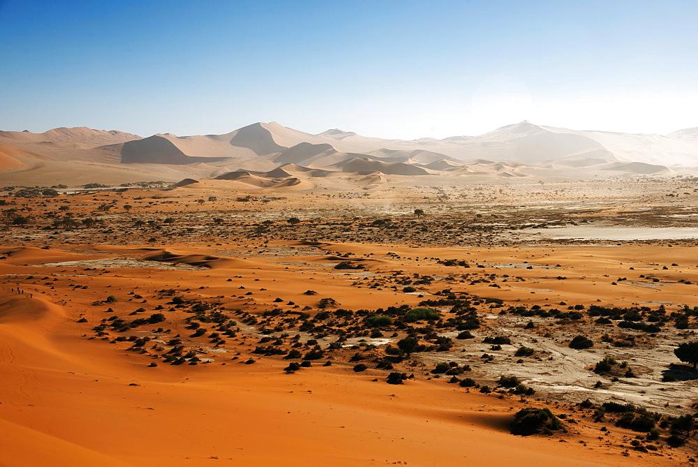 Sand dunes in the Namib-Naukluft National Park, Namib Desert, Namibia, Africa