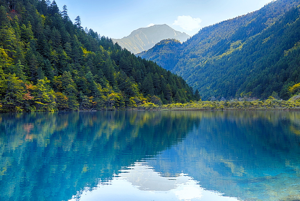 Arrow Bamboo Lake, Jiuzhaigou National Park, Sichuan Province, China, Asia