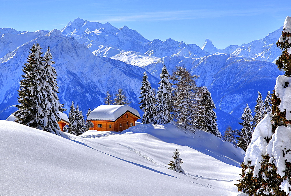 Winter landscape with deep snow-covered chalets, in the back summit of Dom, 4545m, and Matterhorn, 4478m, Riederalp, Aletsch area, Upper Valais, Valais, Switzerland, Europe