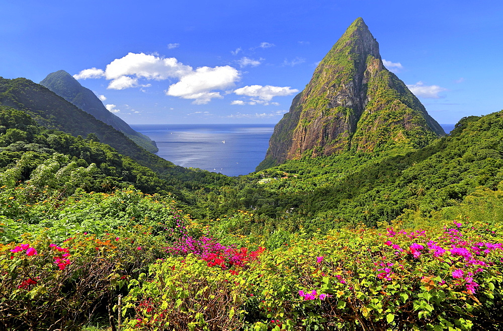 Landscape with the two Pitons, Gros Piton 770m and Petit Piton 743m, Soufriere, St. Lucia, Lesser Antilles, West Indies, Caribbean Islands