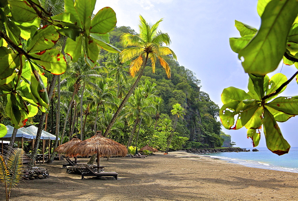 Anse Mamin Bay with Palm Beach, Soufriere, St. Lucia, Lesser Antilles, West Indies, Caribbean Islands