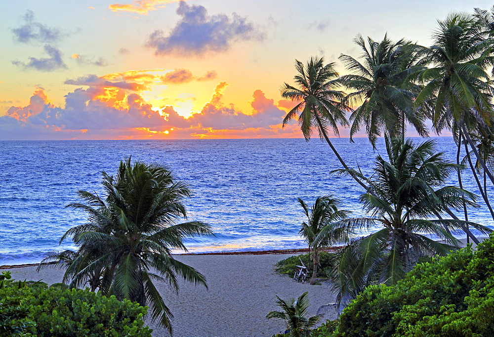 Palm beach, Bottom Bay beach on the Atlantic side at sunrise, Barbados, Lesser Antilles, West Indies, Caribbean, West Indies, Central America
