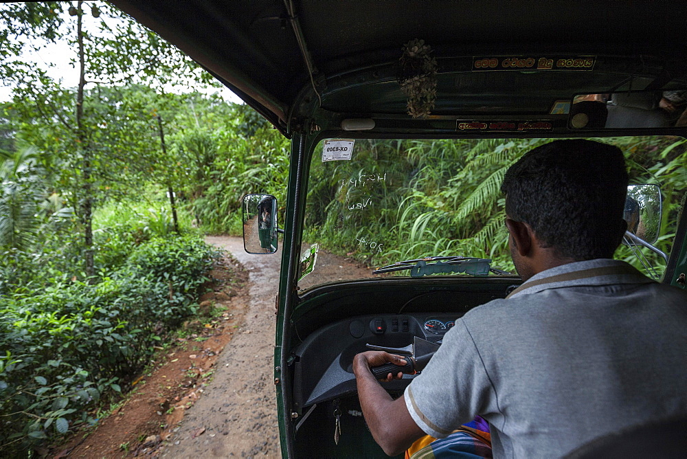 Tuk-tuk driver on small road, thick vegetation, Sinharaja Forest Reserve, Sri Lanka, Asia