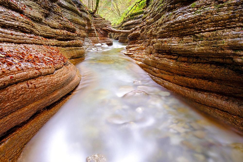 Gorge, stream, Taugl, Tauglbach, Tauglbachklamm, Hallein District, Salzburg, Austria, Europe