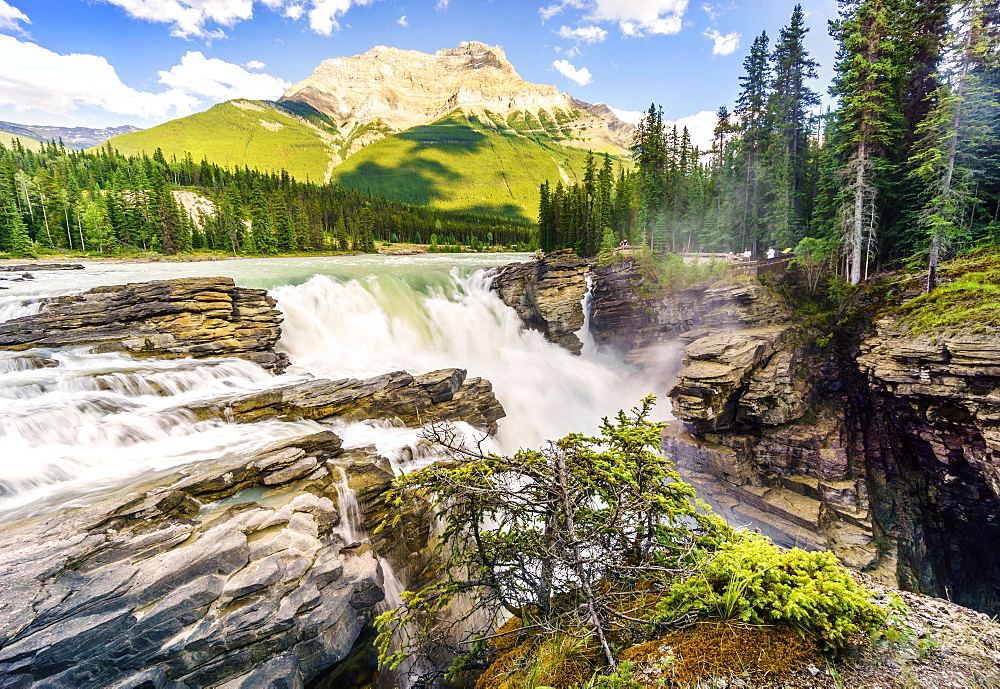 Athabasca Waterfalls, Athabasca river, Jasper National Park, Alberta, Canada, North America