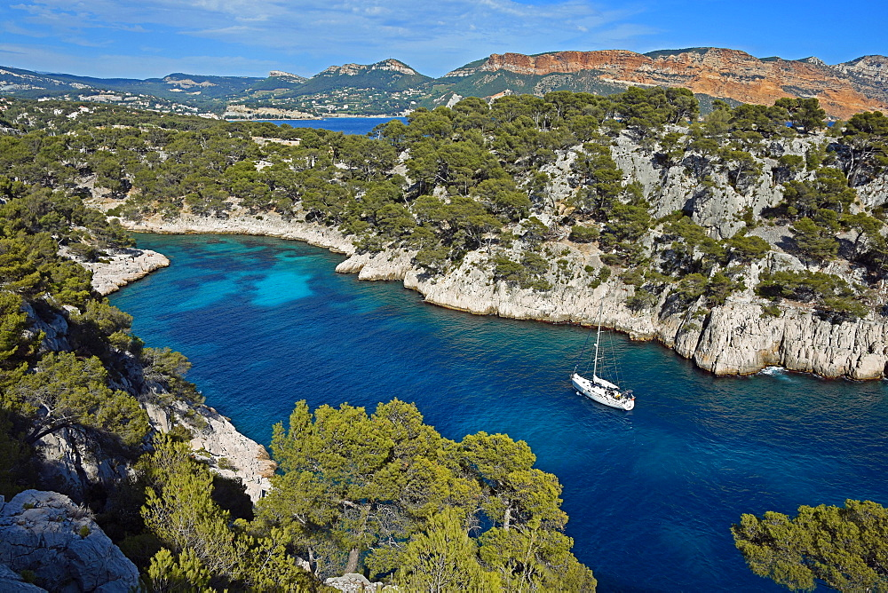 Calanque de Port Pin in front of Soubeyranes cliffs, Cassis, Calanques National Park, Provence, France, Europe