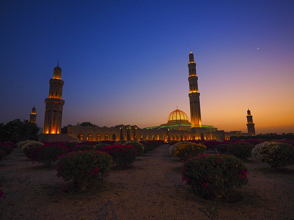 Evening atmosphere, illuminated Great Sultan Qabus Mosque, garden with rhododenderen, Muscat, Oman, Asia
