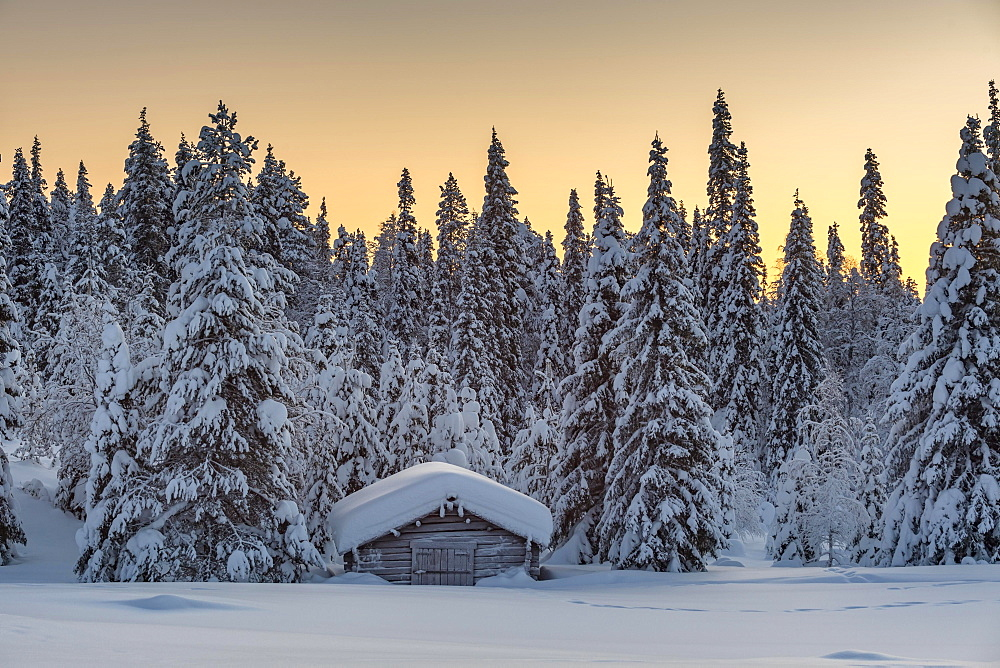 Snow-covered hut in winter landscape, morning atmosphere, Pallastunturi, Pallas-Yllästunturi National Park, Muonio, Lapland, Finland, Europe
