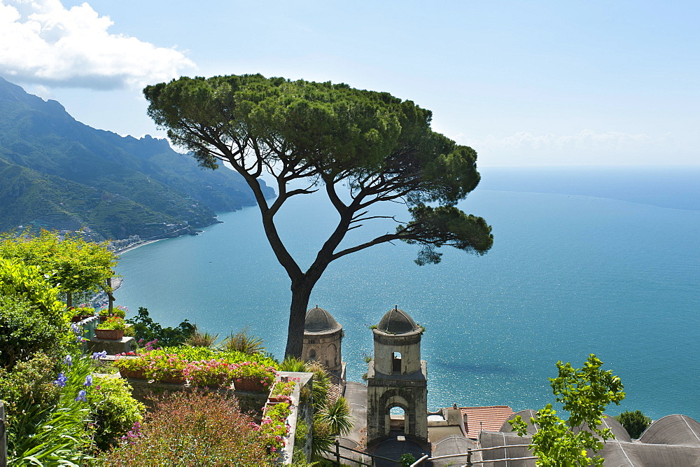 View of coast and sea, pine tree and church, Chiesa dell'Annunziata, Ravello, Amalfi Coast, Campania, Italy, Europe