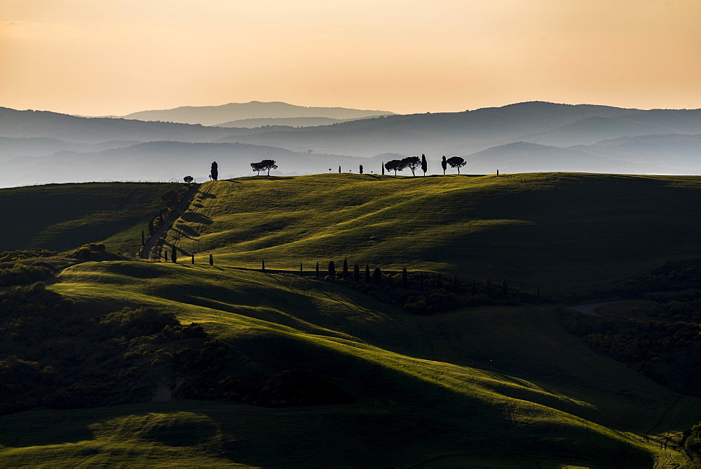 Tuscan landscape at sunset, San Quirico d'Orcia, Val d'Orcia, Tuscany, Italy, Europe