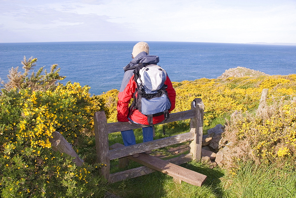 Hiker sitting on a stile, looking out over the sea, coast, Pembrokeshire National Park, Wales, United Kingdom, Europe