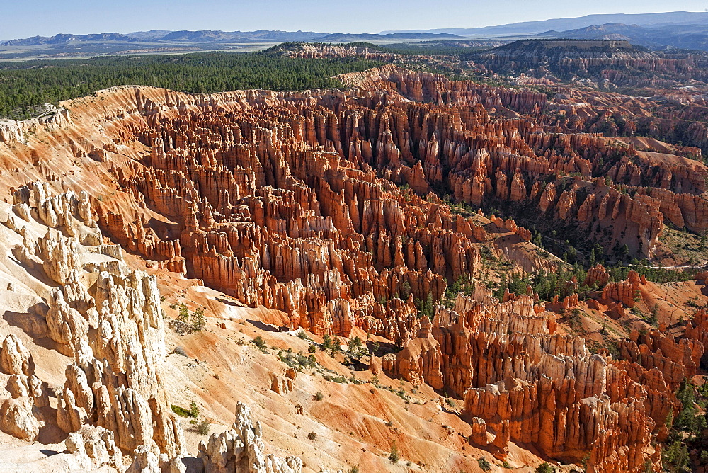 View of Bryce Amphitheater from Inspiration Point, coloured rock formations, fairy chimneys, morning light, Bryce Canyon National Park, Utah, USA, North America