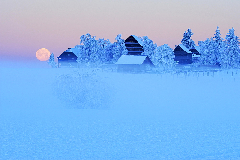 Full moon in an idyllic winter landscape, Mueswagnen, Aargau, Switzerland, Europe
