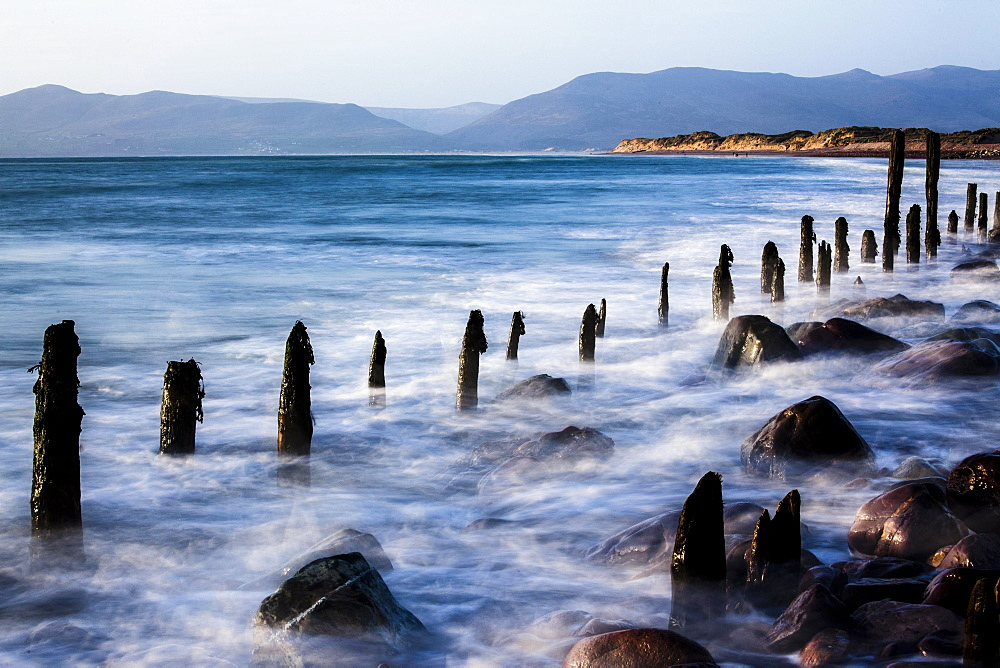 Groynes on Rossbehy Beach, Glenbeigh, County Kerry, Ireland, Europe