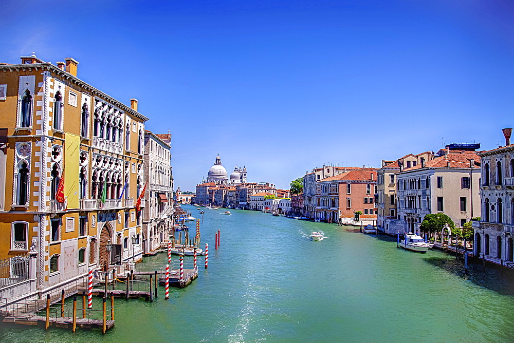 View from Ponte dell'Accademia, Palazzi Barbaro left, Church of Santa Maria della Salute at the back, Grand Canal, Venice, Veneto, Italy, Europe