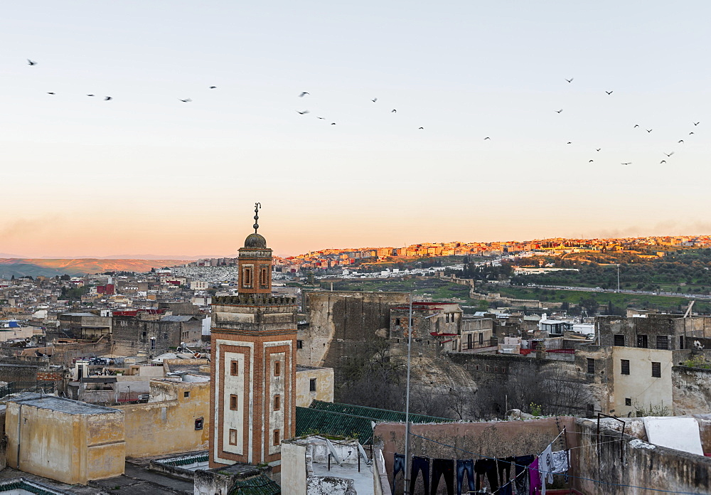 View of the old town, mosque with minaret, sunset, Fes-Boulemane, Fez, Morocco, Africa