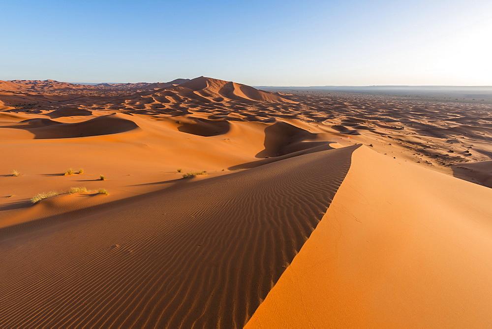 Red sand dunes in the desert, dune landscape Erg Chebbi, Merzouga, Sahara, Morocco, Africa
