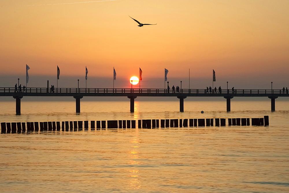 Breakwaters or groynes, pier, sunset, Baltic Sea, Zingst, Fischland-Darß-Zingst peninsula, Mecklenburg-Western Pomerania, Germany, Europe