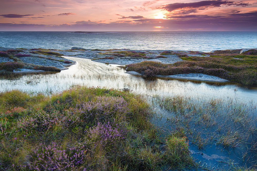 Sunset, evening atmosphere at the coastline near Smogen, Bohuslan province, Vastra Gotaland County, Sweden, Europe