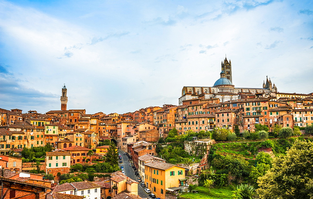 Historic centre with the cathedral Cattedrale di Santa Maria Assunta, and Torre del Mangia, Siena, Tuscany, Italy, Europe