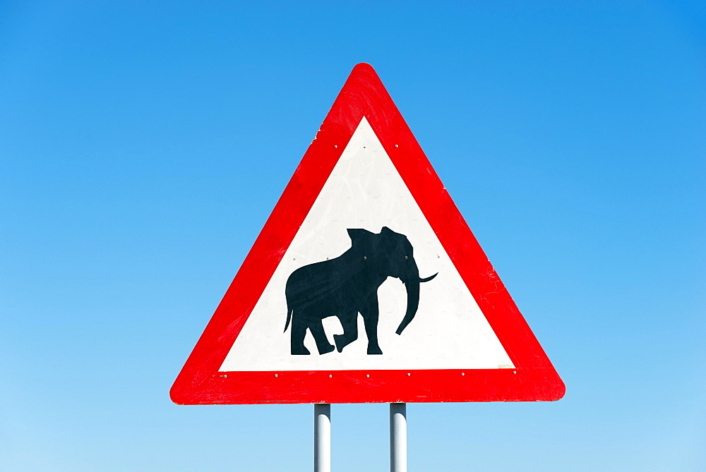 Sign, beware elephants, near Opuwo, Namibia, Africa