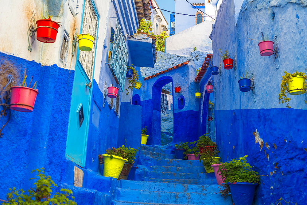 Narrow alley with colorful flowerpots, blue houses, Medina of Chefchaouen, Chaouen, Tangier-Tétouan, Morocco, Africa - 832-382319