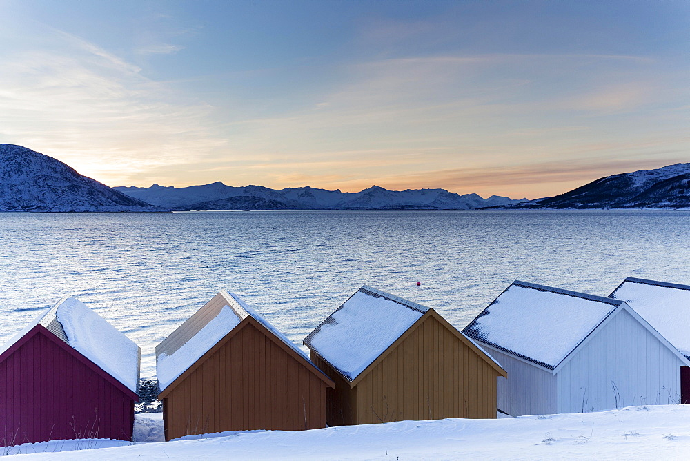 Colored wooden huts on the Nordfjord, Kvaloya, Troms, Norway, Europe