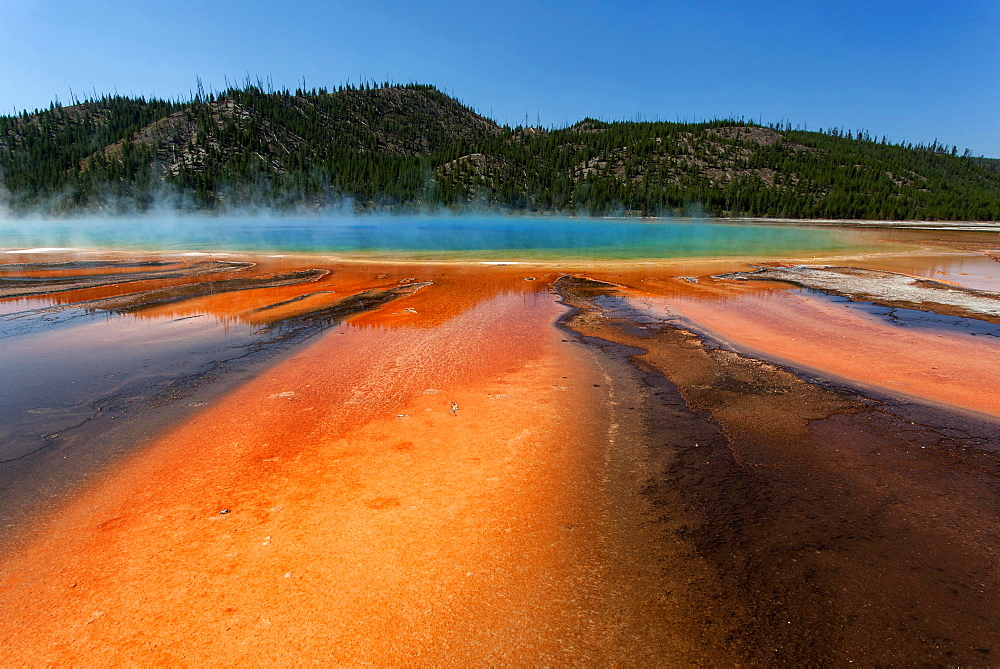 Grand Prismatic Spring, Midway Geyser Basin, Yellowstone National Park, Wyoming, United States, North America