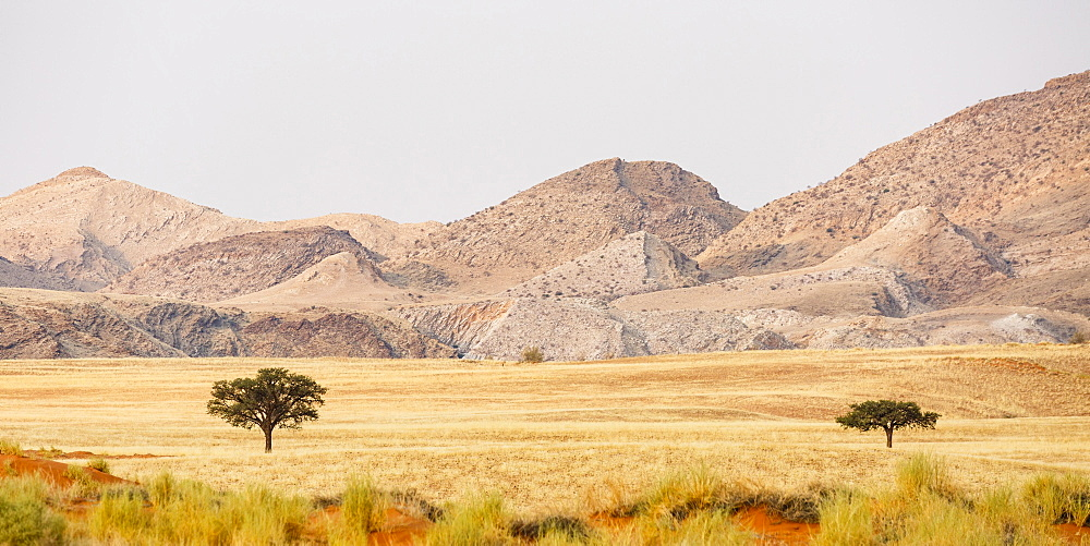 Landscape in Tsondab Valley Nature Reserve, Panorama, Namib-Naukluft National Park, Namibia, Africa