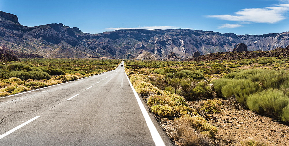 Road through volcanic landscape, plateau Llano de Ucanca with shrubs, Parque Nacional de las Canadas del Teide, Teide National Park, UNESCO World Heritage Site, Tenerife, Canary Islands, Spain, Europe