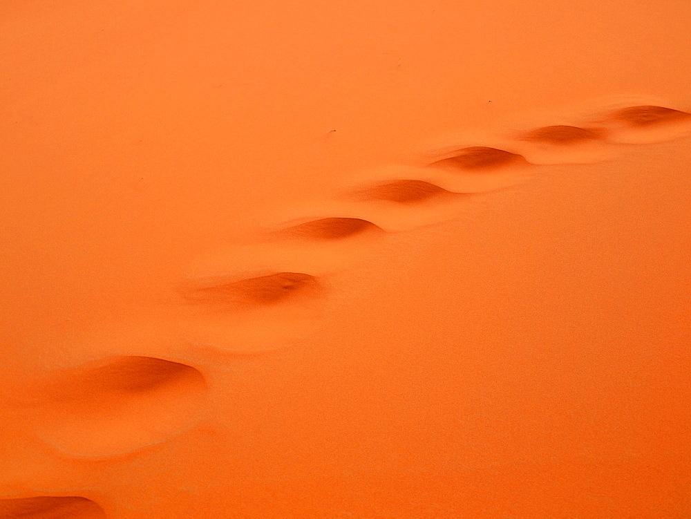 Camel tracks in the desert sand, Erg Chebbi desert, near Merzouga, Morocco, Africa
