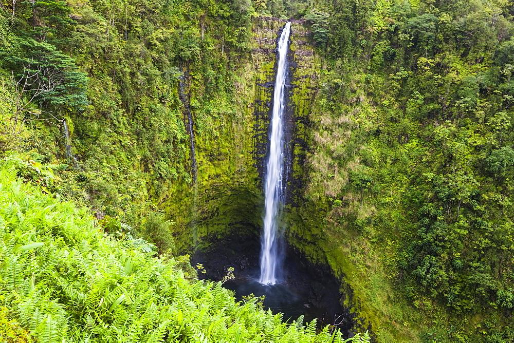 Akaka Falls, Akaka Falls State Park, Big Island, Hawaii, United States, North America