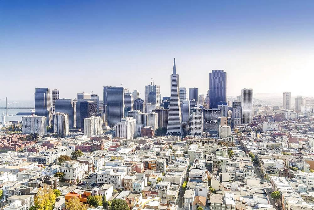 Skyline, downtown with business and residential district, San Francisco, California, USA, North America