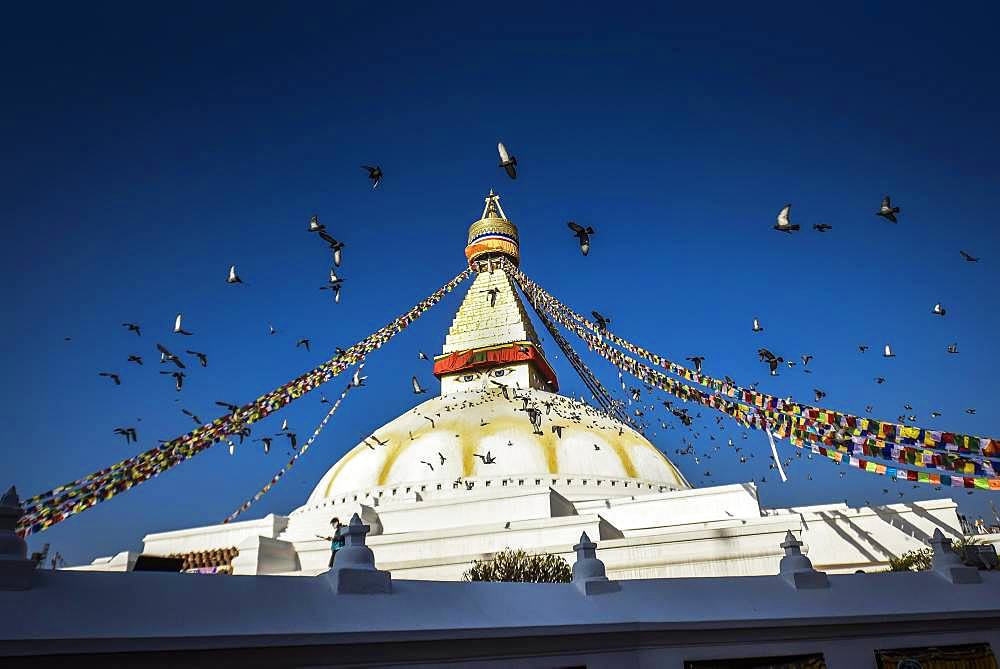 Boudhanath Stupa with birds, Boudha, Tibetan Buddhism, Kathmandu, Nepal, Asia